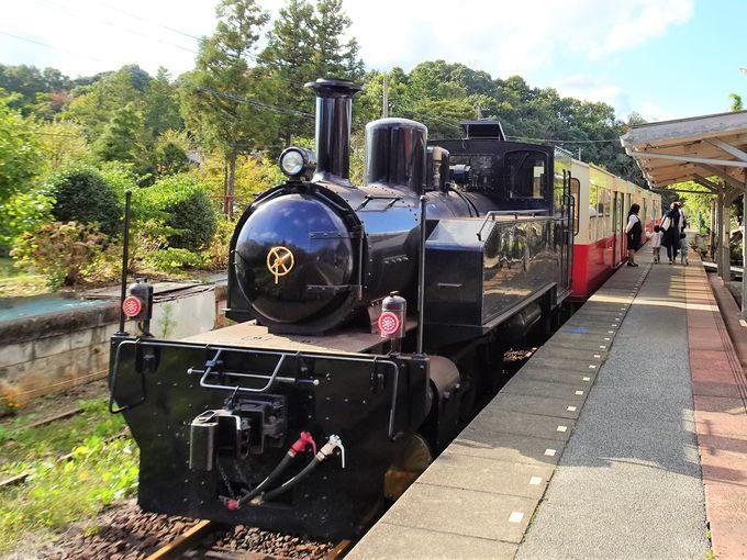 小湊鉄道沿線観光のポイントは「里山トロッコ号」