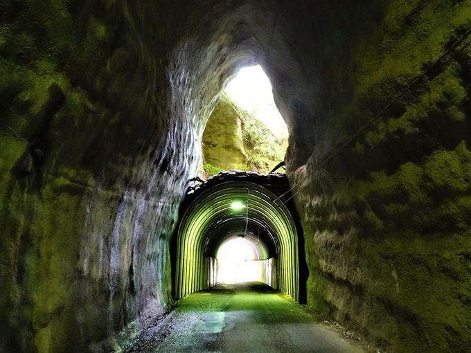 養老渓谷駅から「粟又の滝」、「向山トンネル」へ