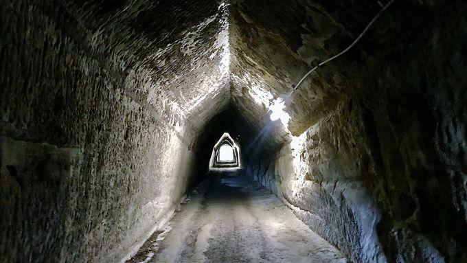 月崎駅から「チバニアン」と房総のユニークなトンネルへ