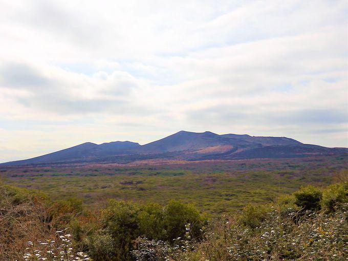伊豆大島のシンボル、三原山は母なる地球のエネルギー満載!