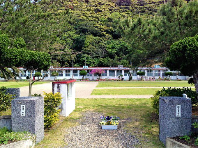 奄美大島観光ドライブは、厳しいアップダウンと絶景の連続