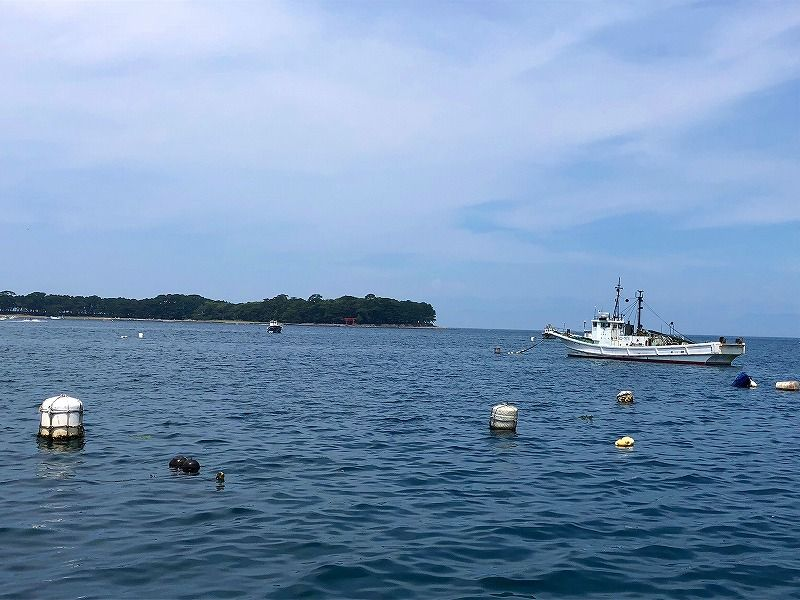 2,500円で一日昼釣りが楽しめるコスパ最高の船釣り!
