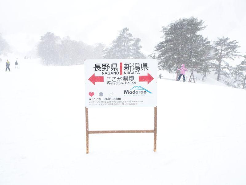極上パウダーのゴージャスな雪質を堪能!広大な「斑尾高原スキー場」