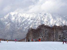 雪質最高&戸隠連峰の絶景が大迫力!「戸隠スキー場」の魅力