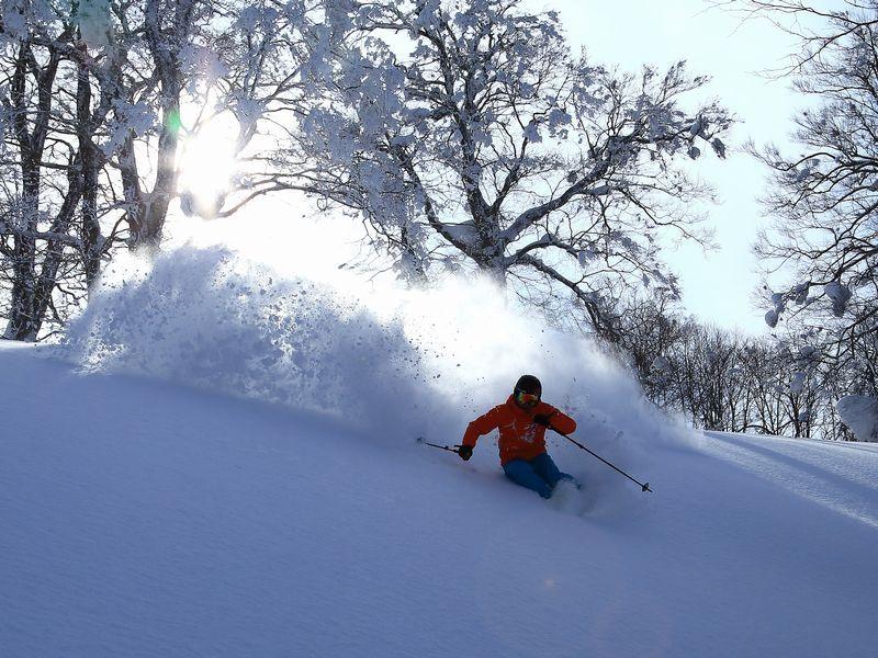 第3位:長野県「野沢温泉スキー場」36コース