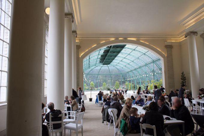 春の特別公開、ラーケン王宮温室。おすすめはカフェ?