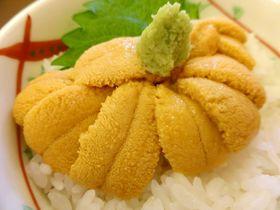 函館グルメが楽しめるおすすめレストラン10選 幅広いジャンル勢揃い