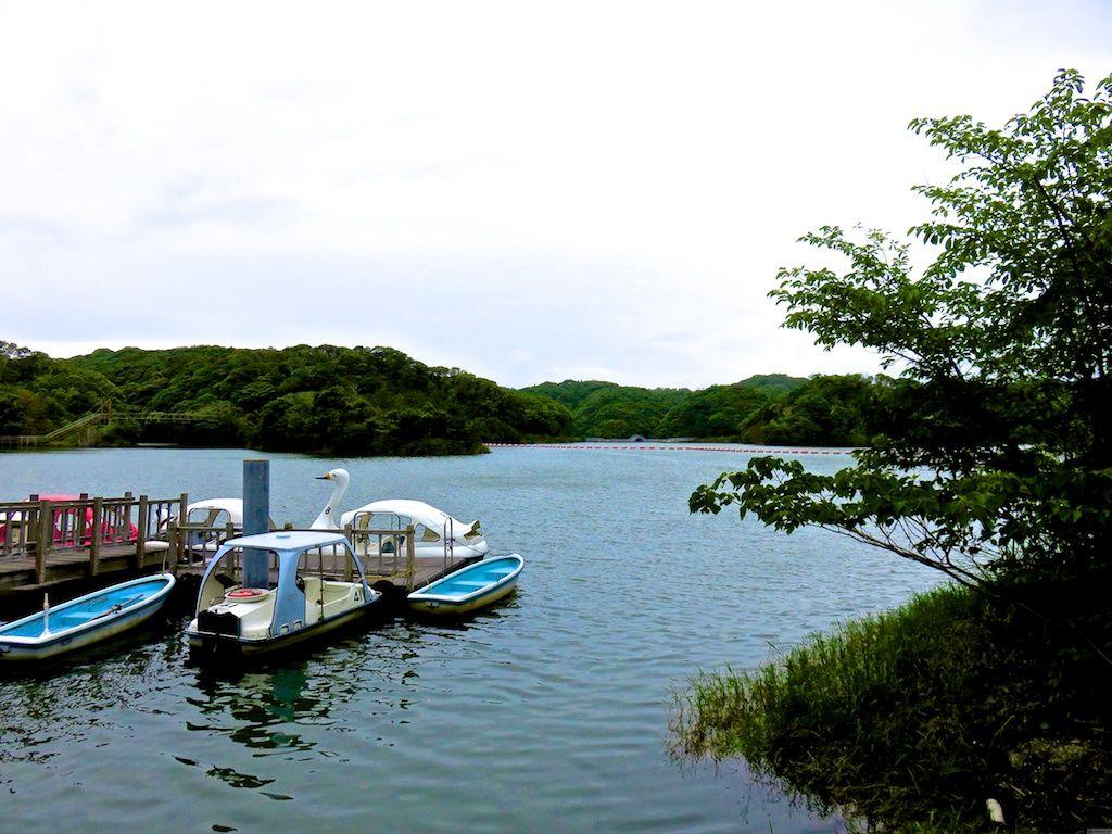 遊覧ボートで広い湖をのんびり水上散歩