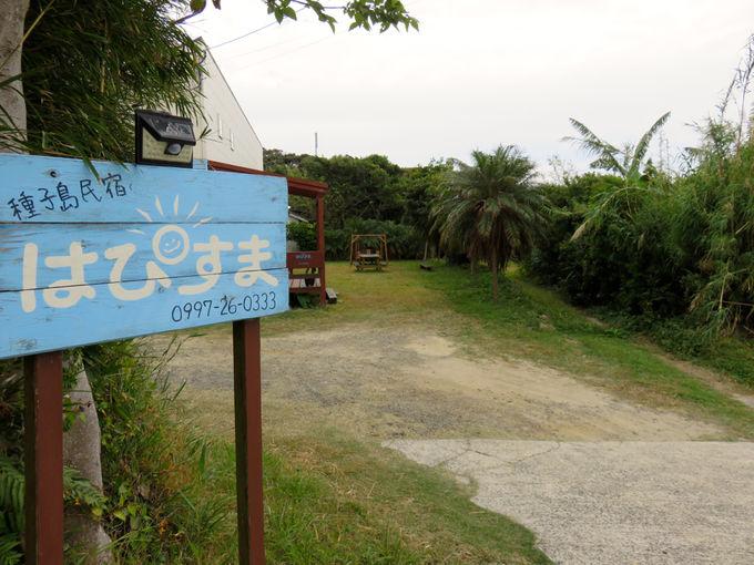 庭と貸切り風呂!種子島の民宿「はぴすま」は子連れ旅に最適