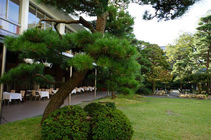 四季折々の風情を映した日本庭園