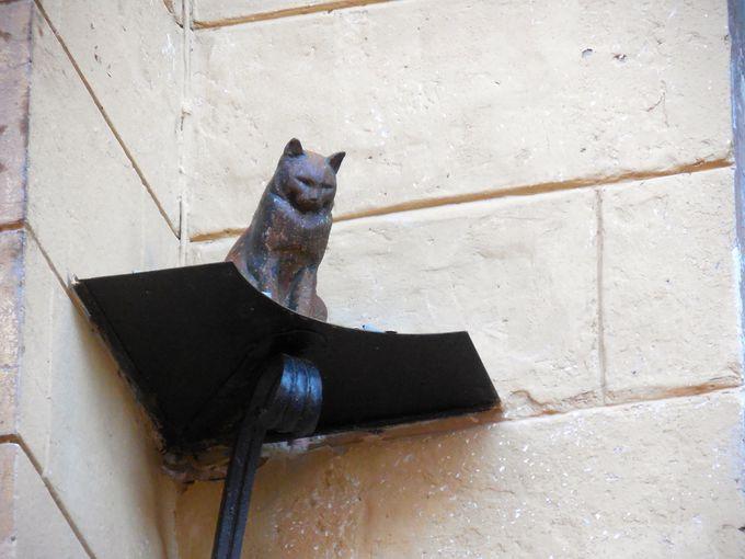 願いが叶う? 猫の像