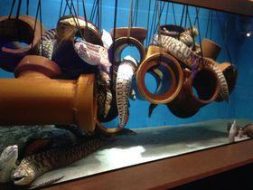 遊べる!笑える!ヴィレヴァン系水族館、蒲郡の「竹島水族館」が秀逸すぎる