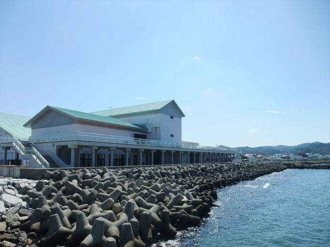 観光の拠点。「渚の駅たてやま」