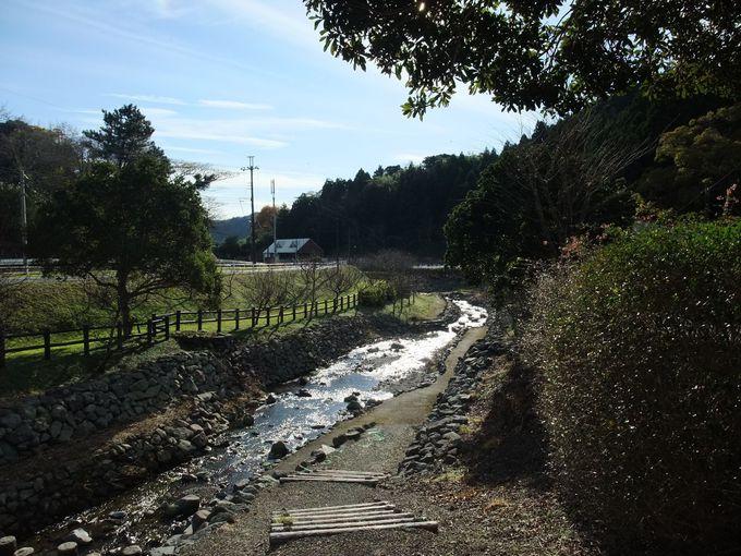 川沿いを歩いてリフレッシュ