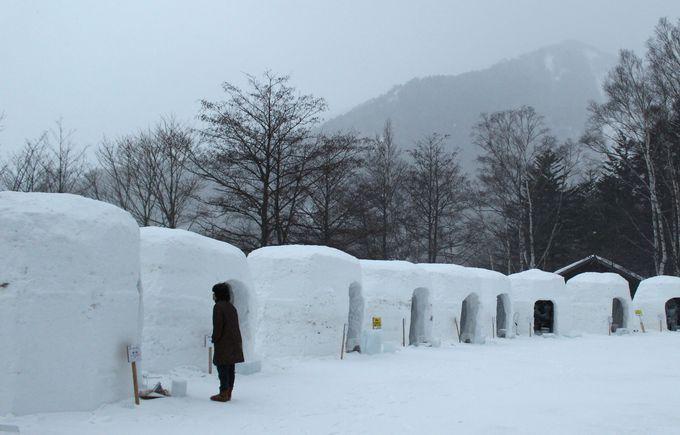 奥日光湯元温泉雪まつり「全日本氷彫刻奥日光大会」&「雪灯り」