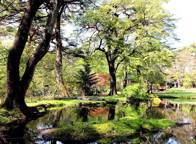 日光の知られざる名庭園を限定公開!「松屋敷」