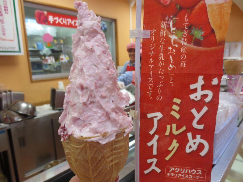 旬のイチゴを満喫!イチゴ王国栃木「絶品イチゴジェラート」5選!
