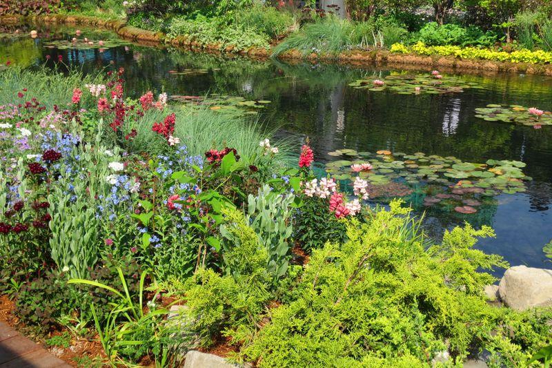 """西武池袋本店・屋上に""""睡蓮の庭""""現る!「食と緑の空中庭園」は花とグルメのオールマイティ美空間!"""