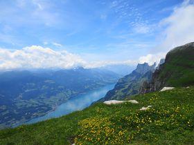 スイス・緑のトッゲンブルグ!天空のお花畑を絶景ハイキング!