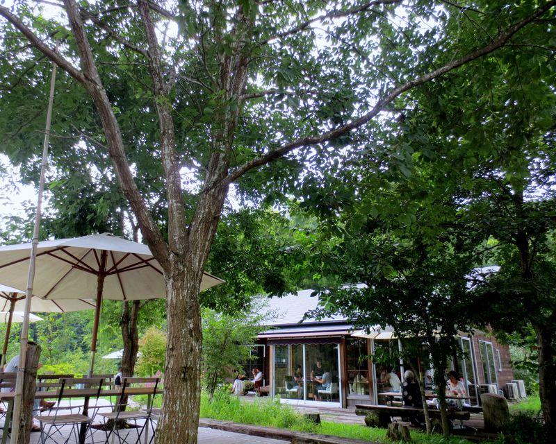 日光・里山の別天地「何時も庵」!創作うどん&天然かき氷!日本版マンマの味を満喫しよう