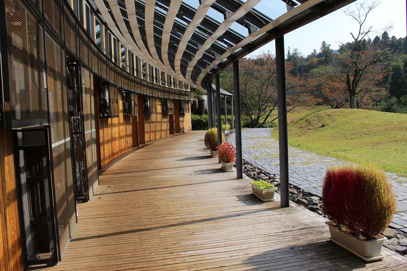 「フォレストイン益子」でリフレッシュ!森と天体観測施設で大自然と戯れる!