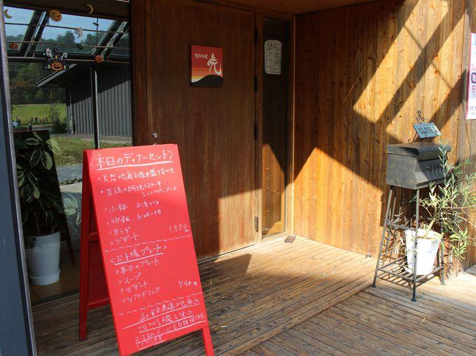 併設レストラン・創作料理「暁」は函館直送の魚介類が美味しい!