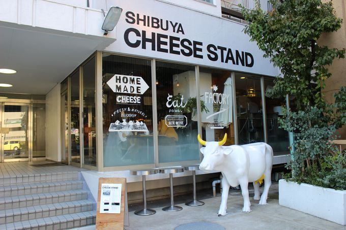 「街に出来たてフレッシュチーズを!」チーズ職人・藤川さんの思い。