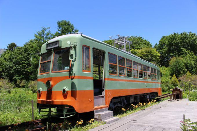 45年ぶりの郷帰り!日光から岡山へ渡った岡電3000形「おしゃれ電車」がチロリン村に!