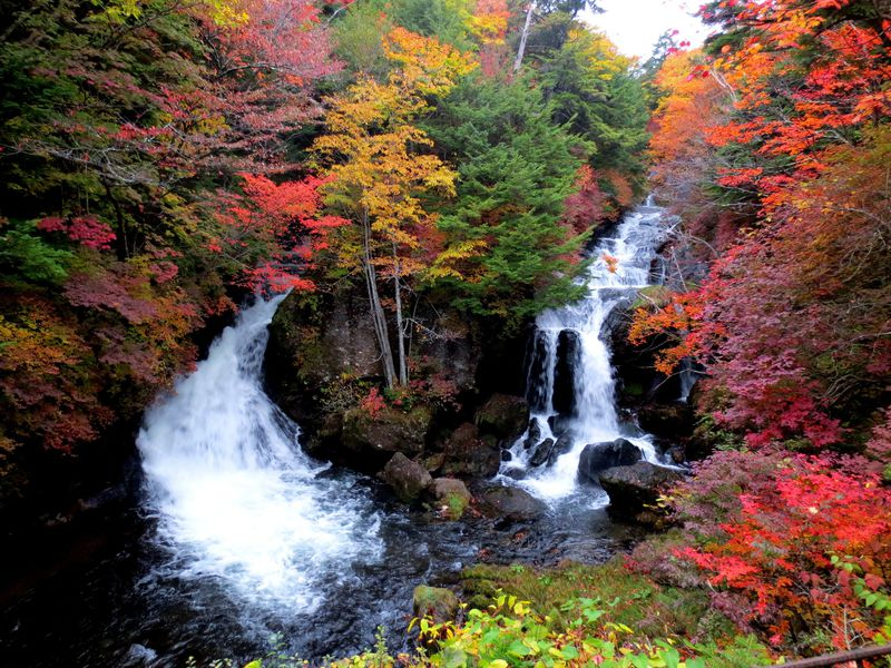 <竜頭の滝>は、日光3名瀑の中でも優雅さ抜群!