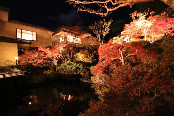 紅葉の美しさが格別!「奥の院 ほてる とく川」自慢の日本庭園