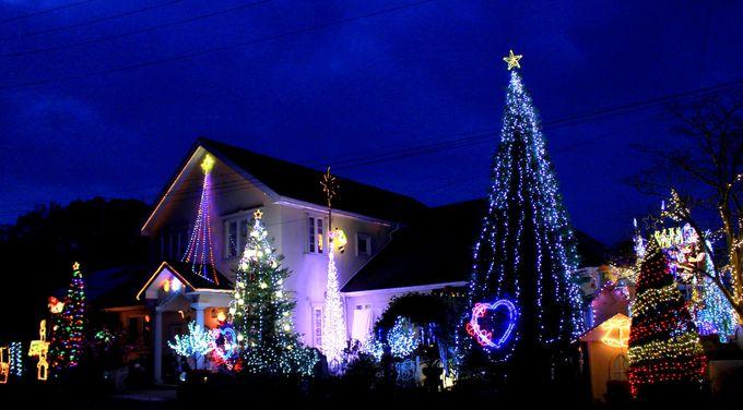 那須の風物詩「ペンシオーネ サライ」のクリスマスイルミネーション!