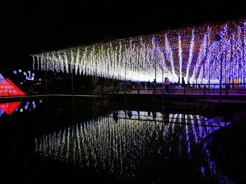あしかがフラワーパーク光の花の庭2019!4年連続日本一のイルミネーション