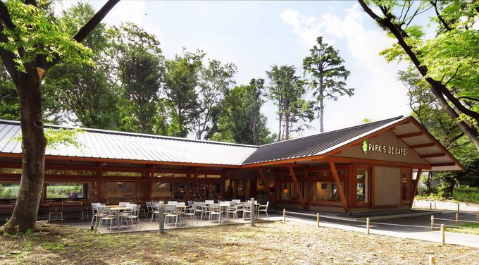 お花見スポットの真ん中!「上野の森パークサイドカフェ」