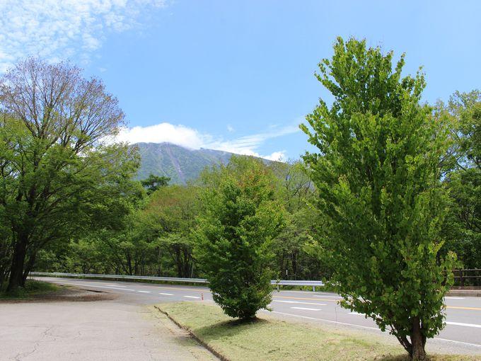日光湯元温泉からファッショナブルにツイールラン・スタート!