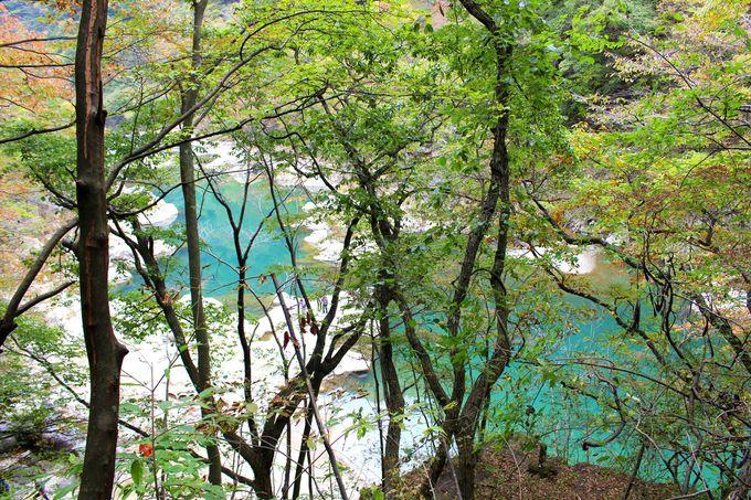 鬼怒川温泉から塩原へ「日塩もみじライン」は紅葉も温泉も凄い!