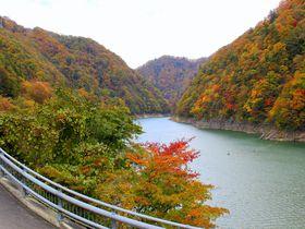 日光「絶景の紅葉狩りドライブ5選」立ち寄り温泉情報つき!