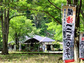 日光湯元温泉「日光山温泉寺」開湯1230年の名湯がじんわりくる