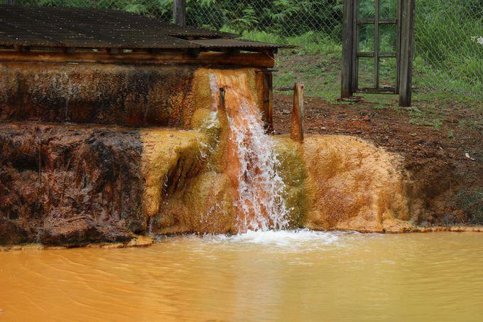 源泉を引き込み蒸気で加温する新鮮な温泉