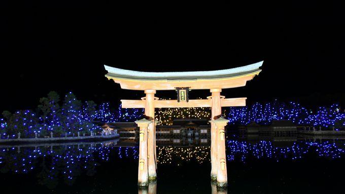 アジアゾーンから再び日本へ