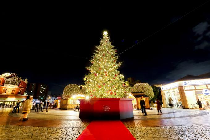 シャンパンゴールドの煌めき!クリスマスツリー&イルミネーション