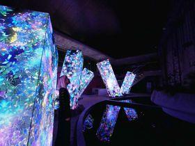 佐賀・武雄温泉「チームラボ かみさまがすまう森」御船山楽園の絶景アートが凄い