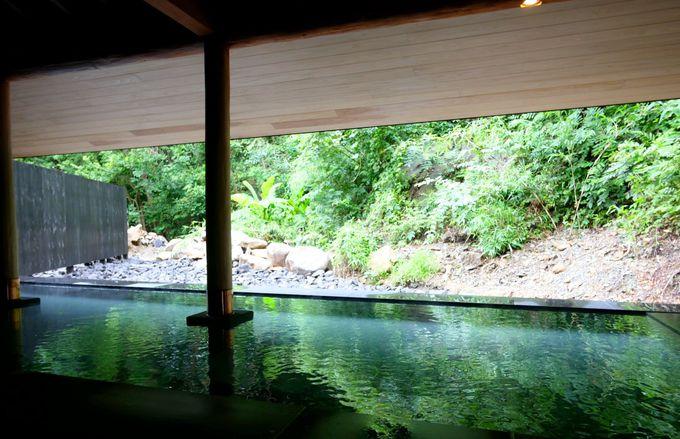 森とひとつになれる温泉は、やわらかな美肌の湯