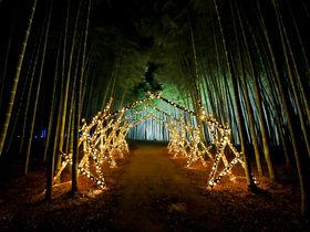 栃木は魅力に溢れている!おすすめ観光スポット10選