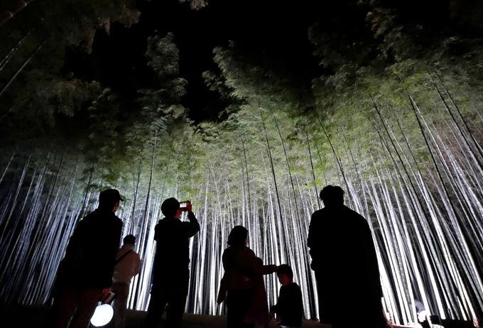 夜景観光コンベンションビューロー監修の光のショーが凄い!