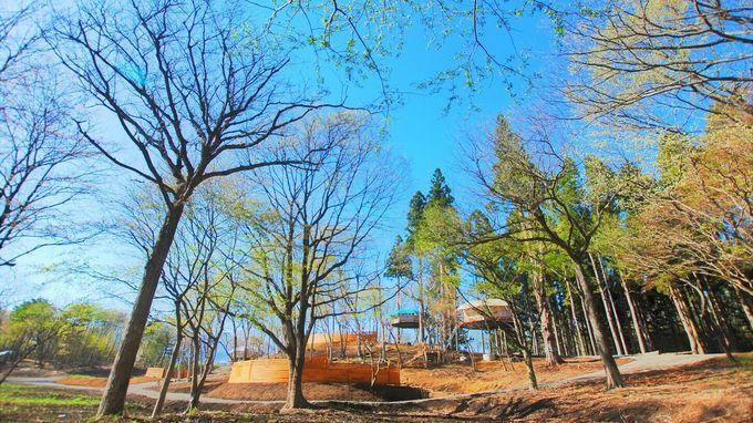 空に手が届きそう! Dom'up camp village 那須高原