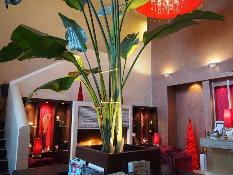 癒しのホテル「ココ・グラン上野不忍」おこもり美容でパワーチャージ!