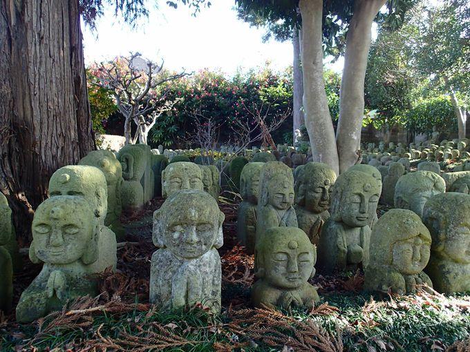 それぞれの表情に込められた想いとは?およそ1000体もの石仏たち