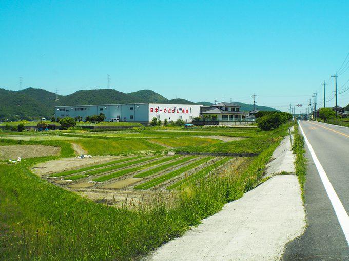人里離れた畑の中の駄菓子屋「日本一のだがし売り場」