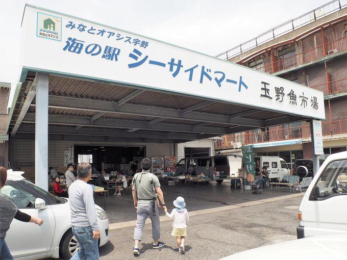 宇野港から徒歩10分の魚市場