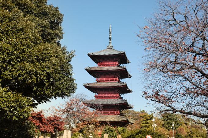 池上のシンボル「池上本門寺」